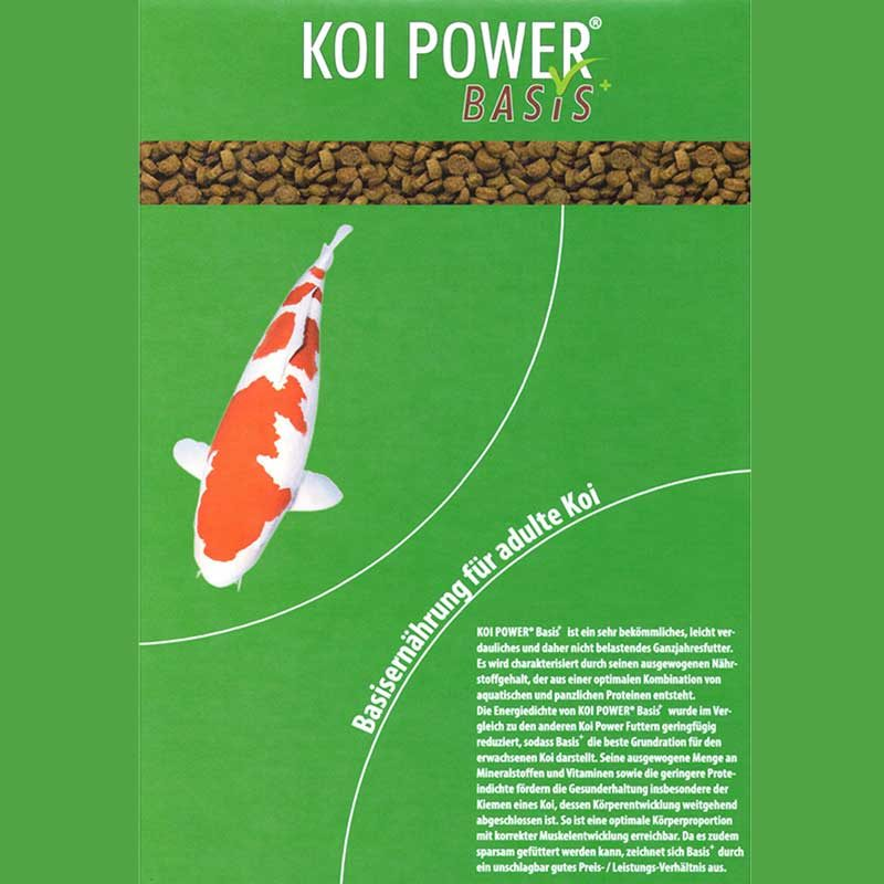 Etikett Koi Power Basis 1