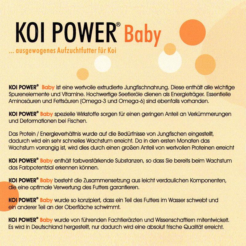 KOI POWER Baby 800x800